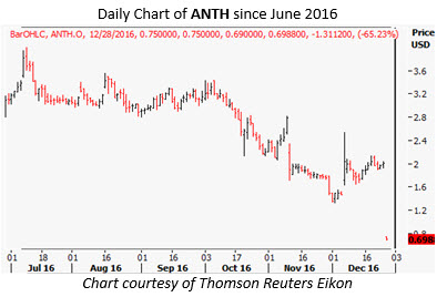 anth daily dec 28