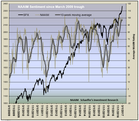 naaim exposure index