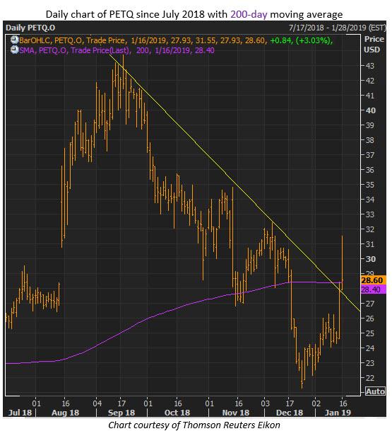 petq stock chart