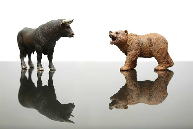 Bull and bear market environment