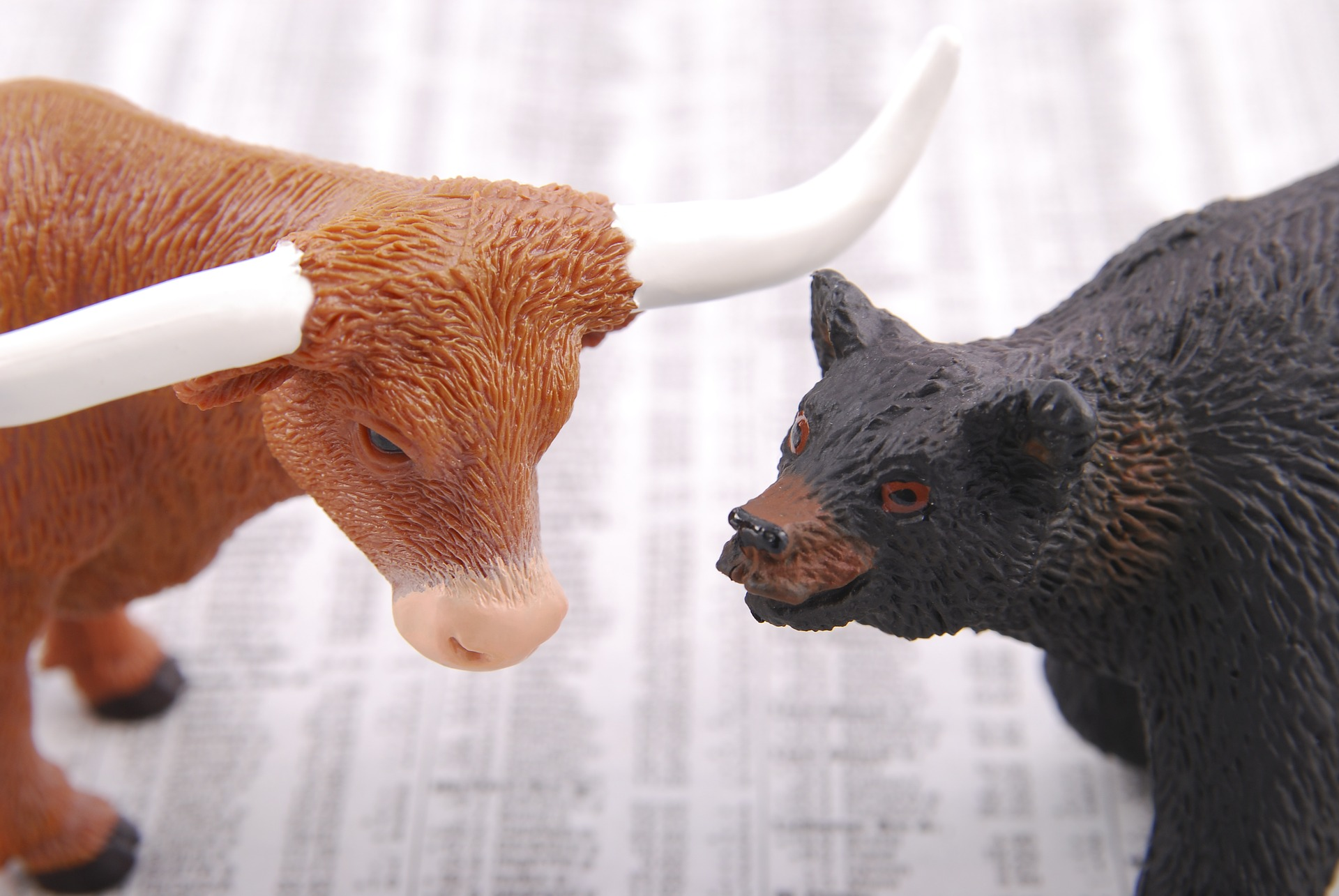Bull market and Bear market strategies