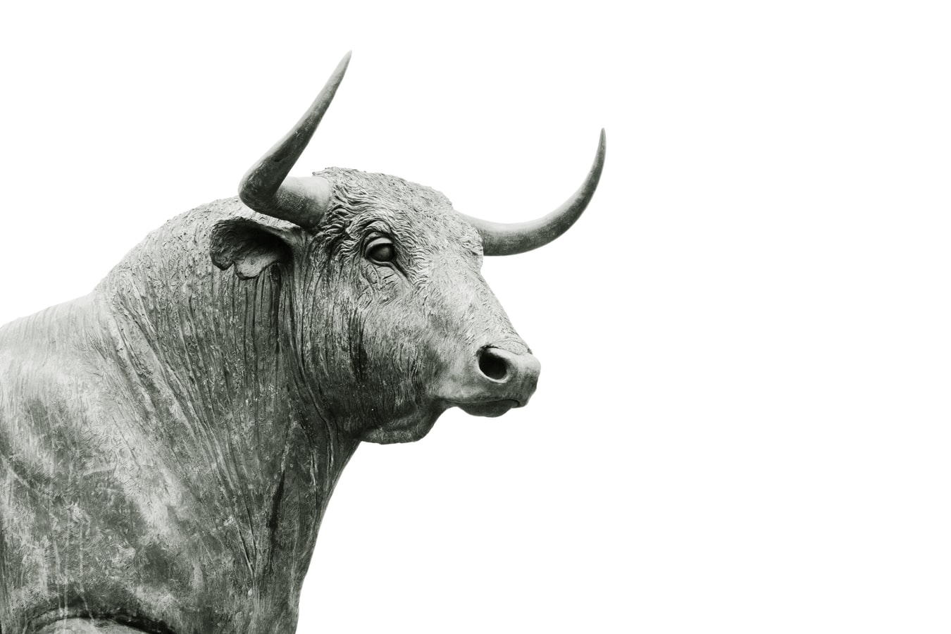 Stock market bull, bull statue, black and white bullish traders