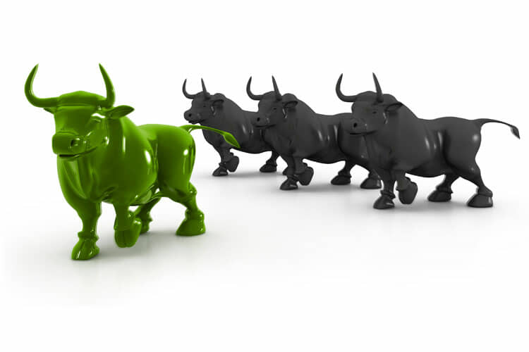 Don't follow the crowd in bull markets