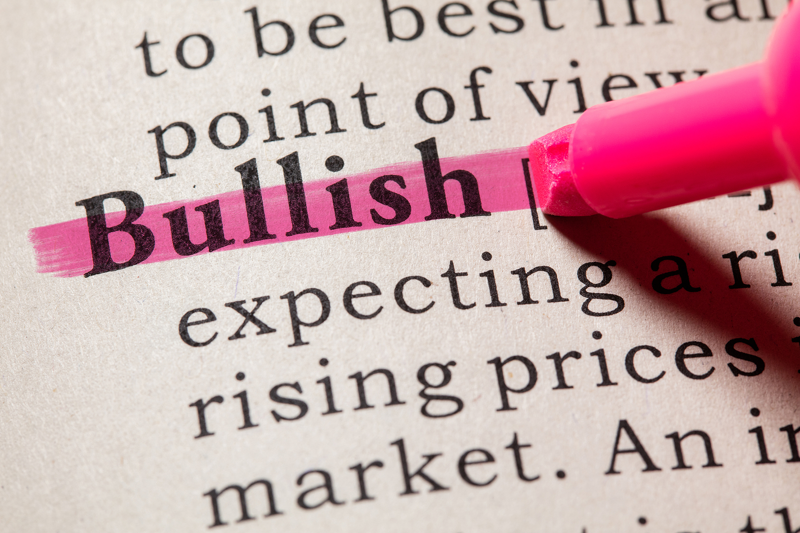 Bullish dictionary definition