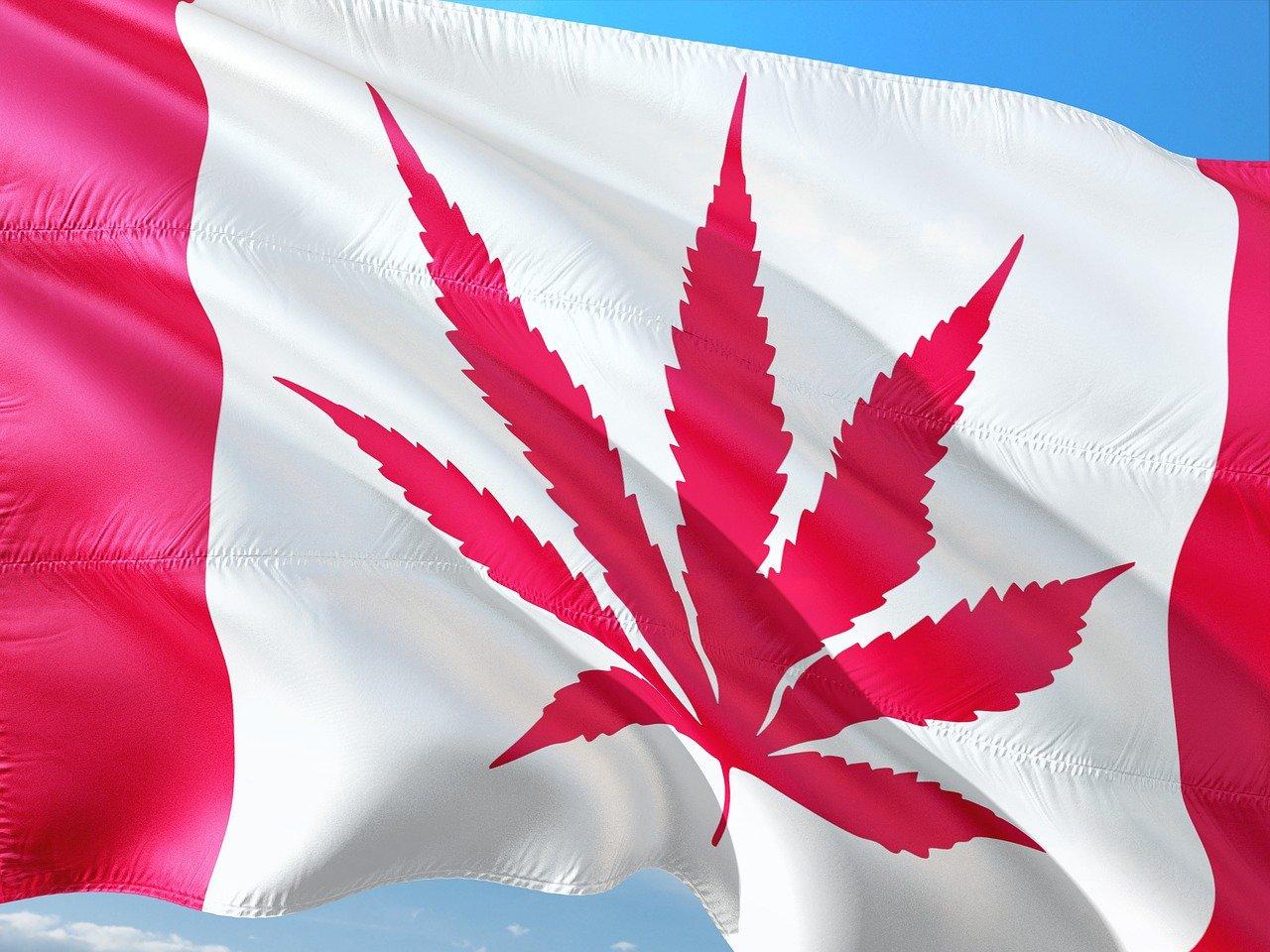 Canadian cannabis stocks, marijuana stocks, pot stocks