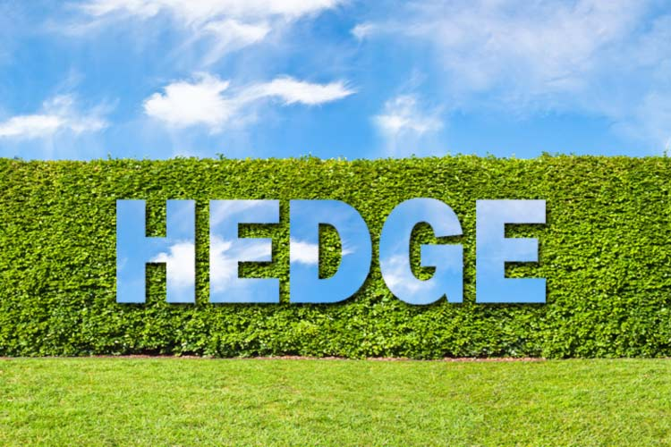 Hedge, Risk Management, Pairs Trading, HedgeHunter, Trade like Hedge Funds