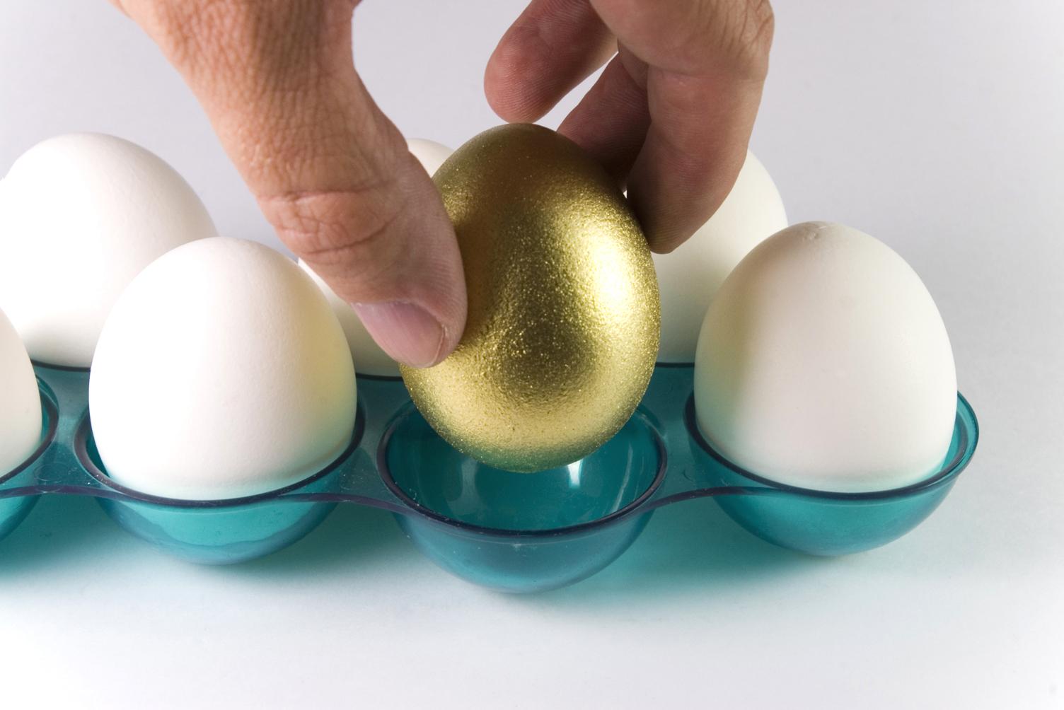 Stock picking, picking the best stocks, golden egg