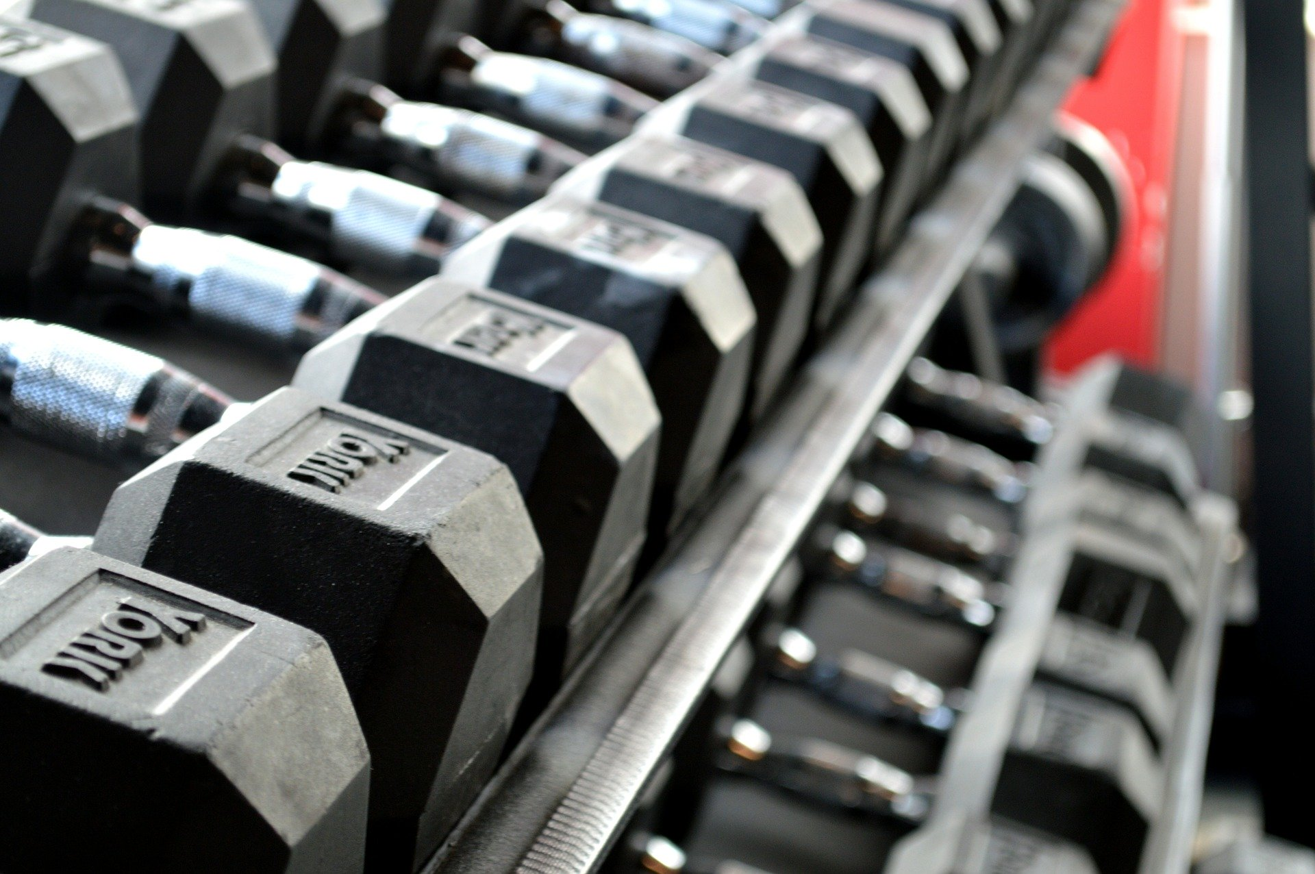 Fitness and Gym stocks news and analysis